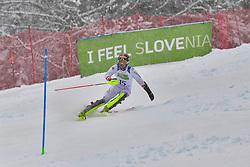 WUERZ Martin, LW6/8-2, AUT, Men's Giant Slalom at the WPAS_2019 Alpine Skiing World Championships, Kranjska Gora, Slovenia