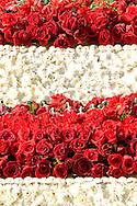 2008 Rose Float Red Roses and White Mums, Pasadena, California