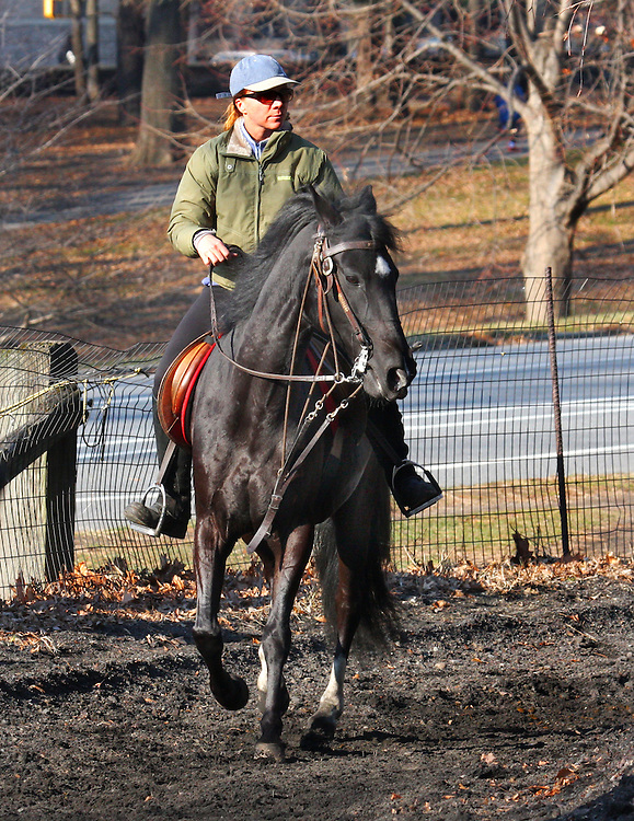 Third in a series of five. This is a very experienced rider on a pacing horse -- not a trotter but apparently a pacer. Taken during the dead of Winter but on a mild day, the lighting was excellent.
