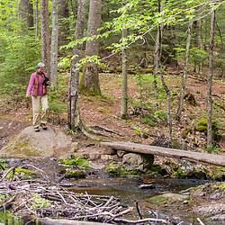 A woman walks a trail at the Orris Falls Preserve in South Berwick, Maine.