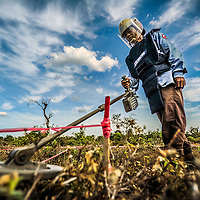 Cambodia has been dealing with the insurmountable task leftover from decades of war and its legacy, unexploded ordnance or UXOs. Estimates range from 3 to 9 million unexploded bombs that are still just beneath the surface throughout the region. These bombs are left over from air strikes, artillery fire, mortar shells, rockets, grenades, anti-personnel and anti-vehicle land mines are indiscriminate weapons and do not expire, often killing or injuring between 100 to 200 people in Cambodia a year. With little resource, the countries' people and Non Governmental Organizations (NGOs) are still facing over a hundred years being exposed to this deadly issue while walking and cultivating their land in fear.<br /> <br /> Cambodian Mine Action Centre (CMAC) worker clad in protective gear prepares to search for land mines and unexploded ordnance using a metal detector to sweep a field in the Cambodian countryside province of Kampong Thom. Jan. 2013.