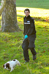 © Licensed to London News Pictures. 19th December 2014. Essex, UK. A Police search dog at the scene of the murder of an 18 year old male who was fatally stabbed yesterday at the Chelmsford Museum, Oaklands Park, Moulsham Street, Chelmsford. Two males aged 17 and 19 have been arrested in relation to this matter and remain in custody. Photo credit : Simon Ford/LNP