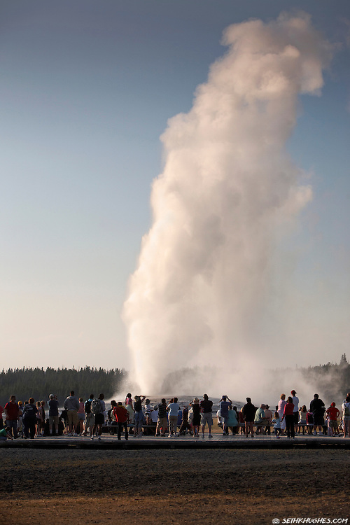 The Old Faithful geyser errupts rewarding throngs of ogling tourists with a brief but dazzling spectacle in Yellowstone National Park.
