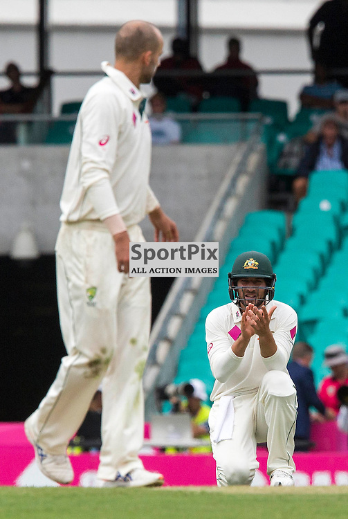 3rd Test Match 2015-16 Day 1, Australia v West Indies, Sydney Cricket Ground; 3 January 2016<br /> Australian Joe Burns claps a good delivery from Australian Nathan Lyon