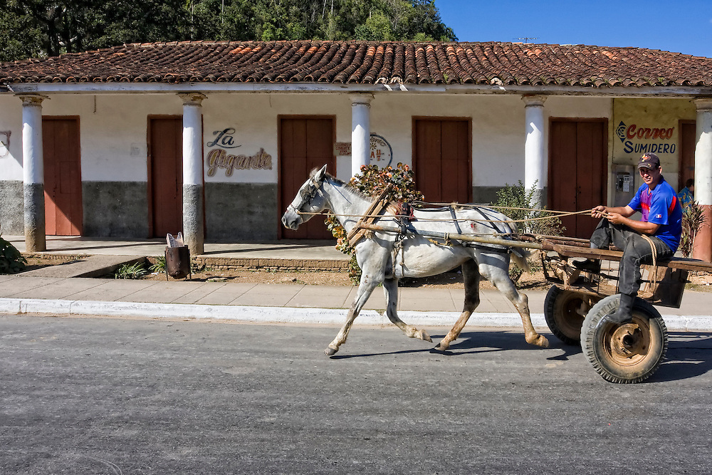 Horse and cart in Sumidero, Pinar del Rio, Cuba.