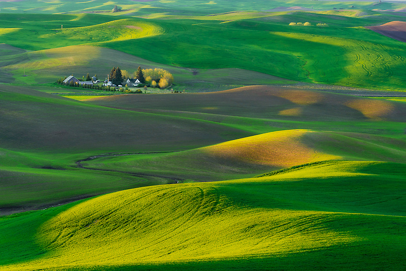 Sunlight kisses the hills surrounding a farmstead just after sunrise in the Palouse region of Eastern Washington State near Steptoe Butte