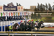 Woodbine - A Day at The Track