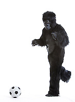 Young man in gorilla costume kicking soccer ball against white background