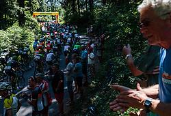 05.07.2017, Altheim, AUT, Ö-Tour, Österreich Radrundfahrt 2017, 3. Etappe von Wieselburg nach Altheim (226,2km), im Bild Peloton Wiesbauer Bergwertung // Peloton Wiesbauer Bergwertung during the 3rd stage from Wieselburg to Altheim (199,6km) of 2017 Tour of Austria. Altheim, Austria on 2017/07/05. EXPA Pictures © 2017, PhotoCredit: EXPA/ JFK