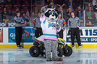 KELOWNA, CANADA - OCTOBER 20: Kelowna Rockets' mascot, Rocky Racoon stands on the ice against the Portland Winterhawks on October 20, 2017 at Prospera Place in Kelowna, British Columbia, Canada.  (Photo by Marissa Baecker/Shoot the Breeze)  *** Local Caption ***