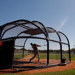 February 23, 2011; Fort Myers, FL, USA; Boston Red Sox right fielder J.D. Drew (7) takes batting practice during spring training at the Player Development Complex.  Mandatory Credit: Derick E. Hingle