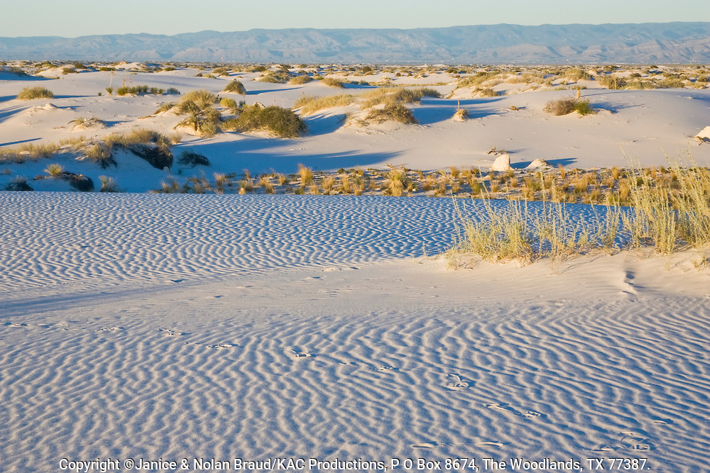 Sand Dunes at sunset in White Sands National Monument in New Mexico. The white sand is actually composed of gypsum.