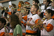 The RIT Pep Band plays during a game at the Gene Polisseni Center on October 3, 2014.