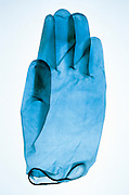 translucent rubber glove