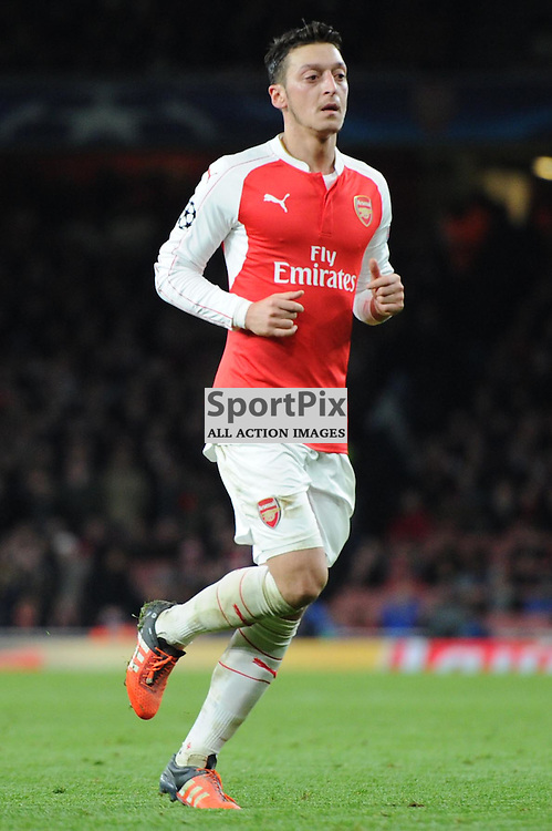 Arsenals Mesut Ozil in action during the Arsenal v Dinamo Zagreb game in the UEFA Champions League on the 24th November 2015 at the Emirates Stadium.