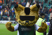 Sunshine the Hibs mascot during the Ladbrokes Scottish Premiership match between Hibernian and Rangers at Easter Road, Edinburgh, Scotland on 8 March 2019.