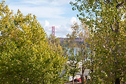 Ponte 25 de Abril, 25th of April suspension Bridge, as seen through the trees of the waterfront park Belem, Lisbon, Portugal