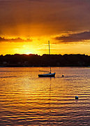 Sunrise sailboat, the Lagoon, West Tisbury, Martha's Vineyard, Massachusetts, USA.