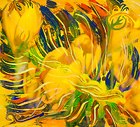 deep yellow flowers like abstract mottled image with fluid bended lines in dominant yellow tones.