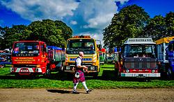 The 44th Biggar Vintage Vehicle Rally held in Biggar on 13th August 2017.  A man in a kilt admiring a row of vintage lorries.<br /> <br /> (c) Andrew Wilson | Edinburgh Elite media