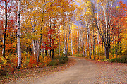 Image of a road the White Mountains National Forest in the fall, New Hampshire, American Northeast