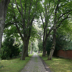 Cemetery Halberstadt