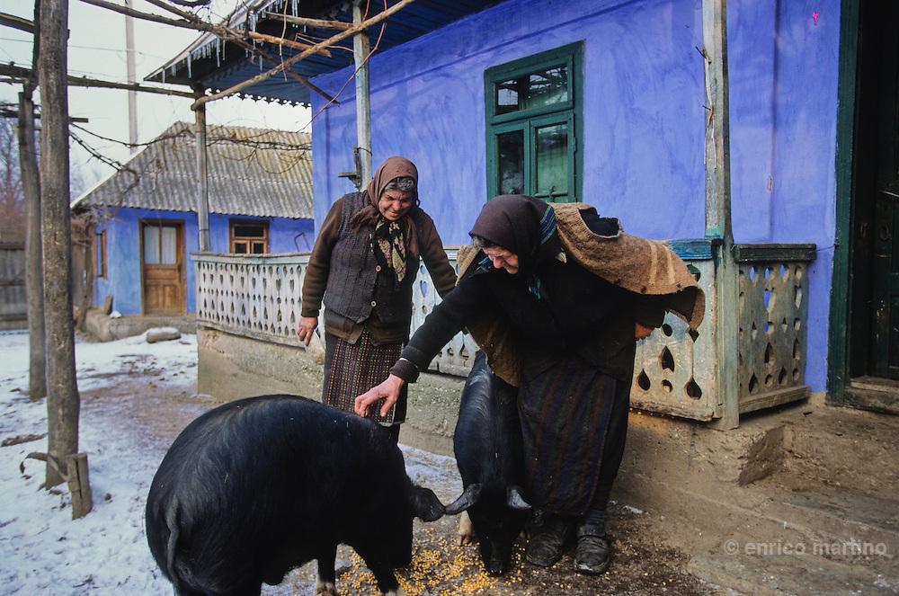Cleja village, Klésza in Hungarian, traditional life of csango farmers.