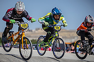 11 Boys #206 (ALLERS Emils) LAT and 11 Boys #180 (DE SOUZA LEAL Kaue) BRA at the 2018 UCI BMX World Championships in Baku, Azerbaijan.