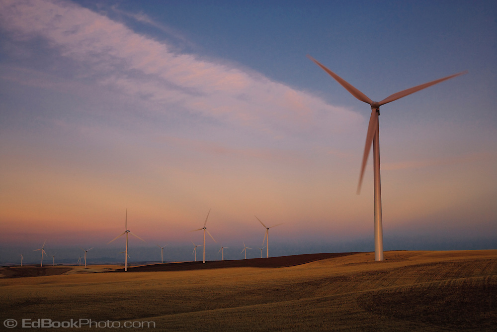 evening light on electric generating windmills in the Palouse region of eastern Washington, USA