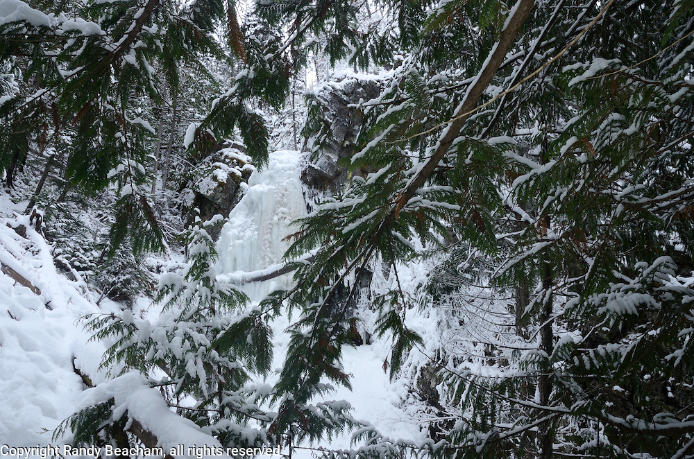 Frozen Turner Falls from underneath western redcedar in winter. Purcell Mountains in the Kootenai National Forest, northwest Montana.