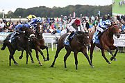 AL RUFAA (1) ridden by Robert Havlin and trained by John Gosden winning The Join The Coral Bet&Get Club ebfstallions.com Novice Stakes over 7f (£15,000)  during the York Coral Sprint Trophy meeting at York Racecourse, York, United Kingdom on 12 October 2019.