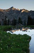 Sunrise at a pond above Gilpin Lake, Mount Zirkel Wilderness, Routt National Forest, Colorado