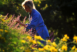 Stock photo of a woman enjoying flowers and the natural surroundings.