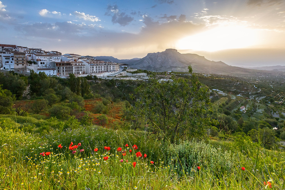 Picturescue spring landscape of Andalucia