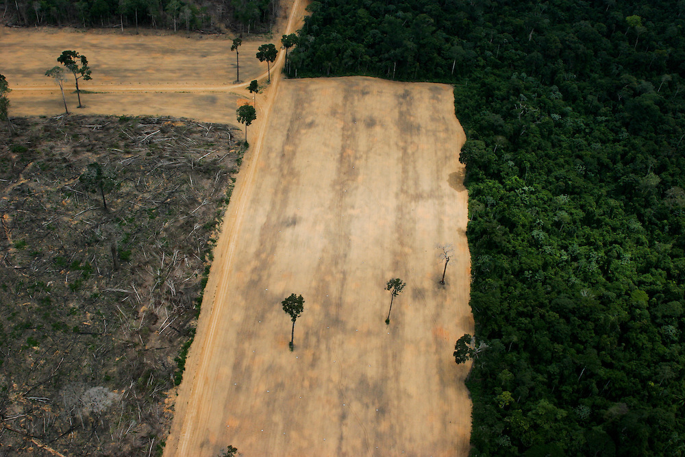 20/02/06 Flight from Manaus to Santarem, Para State, Brazil.  Huge area of 1645 hectares (Gleba do Pacoval area 100km SE of Santarem) illegally logged to plant soy. The biggest illegal logging in Para State in the last 7 years.   ..©Daniel Beltra