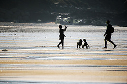 The silhouette of dog owners playing with their pets on Fistral Beach in Newquay, Cornwall.