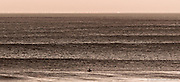 A lone surfer waits for the perfect ride as trains of swells stretch from Ocean Beach to the horizon.  Ocean Beach, San Francisco, California.