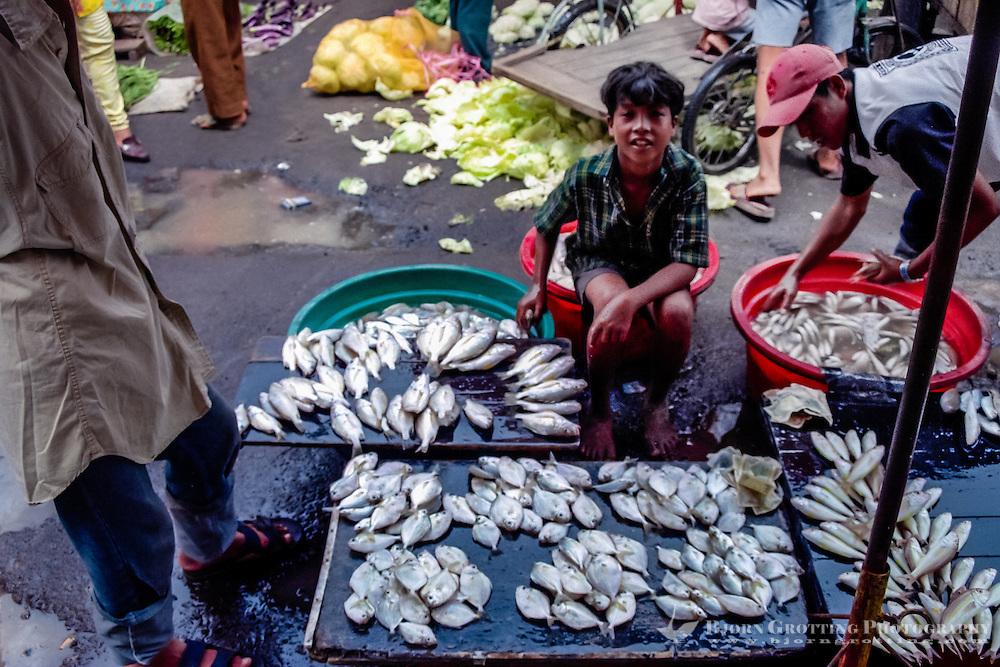 West Sumatra, Padang. Small fish for sale. Padang market, Pasar Raya.