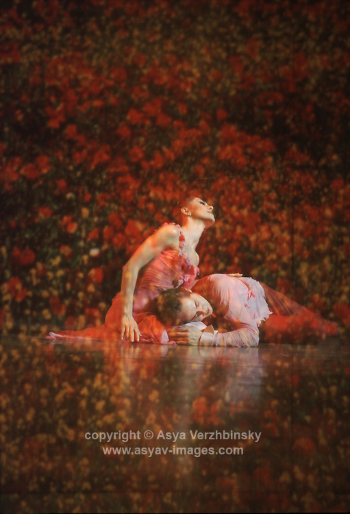 "Michael and Ambra Vallo as Lancelot and Guinevere in David Bintley's ""Arthur - part II"". Birmingham Royal Ballet"