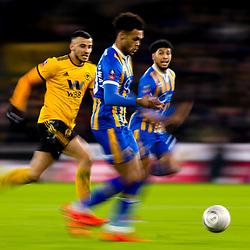 Wolverhampton Wanderers v Shrewsbury Town