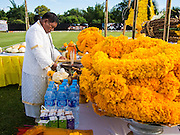 "29 AUGUST 2013 - HUA HIN, PRACHUAP KHIRI KHAN, THAILAND:A Brahmin priest leads a blessing for the elephants before the King's Cup Elephant Polo Tournament in Hua Hin. The tournament's primary sponsor in Anantara Resorts and the tournament is hosted by Anantara Hua Hin. This is the 12th year for the King's Cup Elephant Polo Tournament. The sport of elephant polo started in Nepal in 1982. Proceeds from the King's Cup tournament goes to help rehabilitate elephants rescued from abuse. Each team has three players and three elephants. Matches take place on a pitch (field) 80 meters by 48 meters using standard polo balls. The game is divided into two 7 minute ""chukkas"" or halves. There are 16 teams in this year's tournament, including one team of transgendered ""ladyboys.""    PHOTO BY JACK KURTZ"