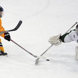 Staff photos by Tom Kelly IV<br /> Springfield's Dan Madonna (7) has his shot blocked by Ridley goalie Brendahn Brawley (1) during the Springfield vs Ridley ice hockey game at Ice Works in Aston, Thursday night.