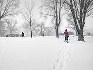 Snowshoeing in Central Park during the Blizzard of 2016