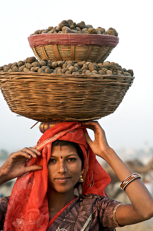 The Pushkar Camel Fair, the largest camel fair in the world, has been held on the full moon each October/November for centuries.  Thousands of camel traders come to one of India's most colorful events.<br /> <br /> This woman has collected camel dung which will be used for the evenings fires.