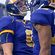 Delaware WR (#6) Mark Schenauer after a 6 yard TOUCHDOWN during The Division I FCS Championship Semifinals at Delaware. No. 3 Delaware defeats Georgia Southern 27-10 on a cold Saturday afternoon at Delaware stadium in Newark Delaware...Delaware will head to Texas for the Division I FCS National Championship Game Vs Eastern Washington eagles who defeated Villanova 41-31 friday night in Washington..