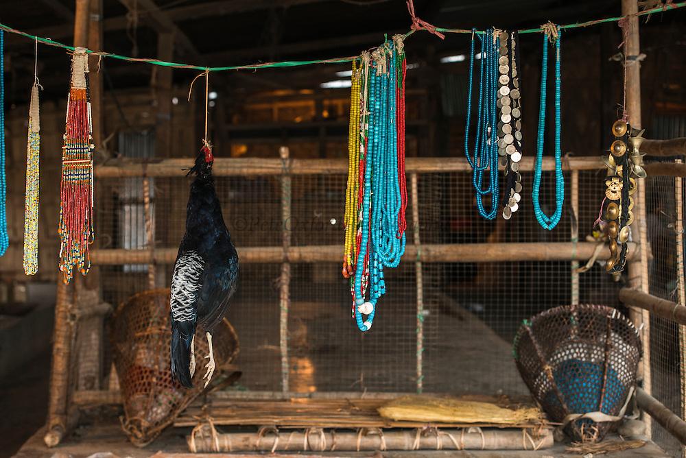 kalij pheasant (Lophura leucomelanos) & beads for sale in market<br /> Daporijo Town<br /> Arunachal Pradesh<br /> North East India