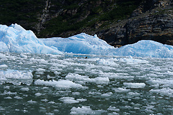 Tracy Arm Fjord - Iceberg