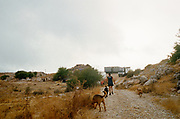 Three dogs and woman walking towards vans, Falougha, Lebanon, 2010