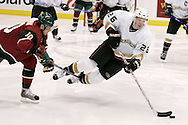 The Anaheim Ducks' Samuel Pahlsson is tripped up by the Minnesota Wild's Marian Gaborik during the third period of the Ducks' 4-1 loss at the Xcel Center in St. Paul, Minnesota Tuesday April 17, 2007 in Game 4 of the Western Conference Quarterfinals.