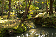 A moss coverd bridge to an island in a pond in the Saiho-ji Garden (Temple of Moss) Kyoto, Japan